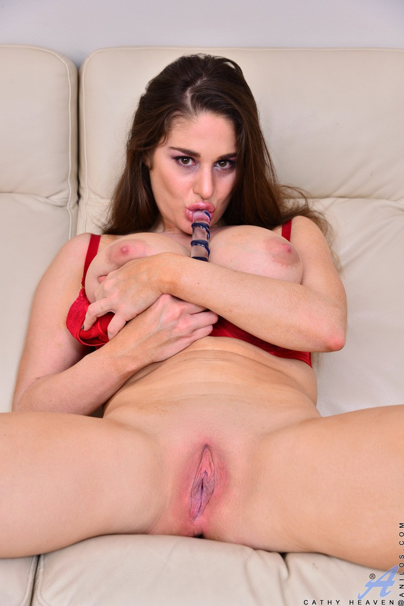 the pleasure of anal sex